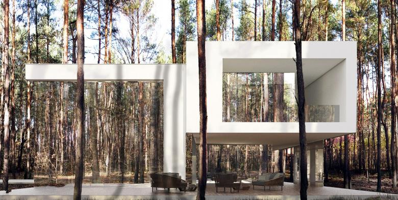 Mirror House 2.0