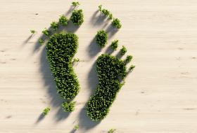 Ekologiczny odcisk stopy zostawia każdy z nas