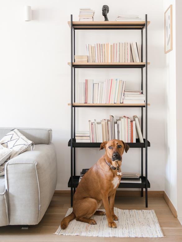 Regał na książki drewniany, czarne rurki