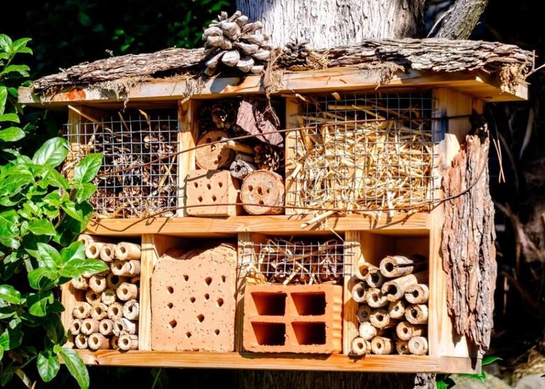 Hotel dla owadów na działce