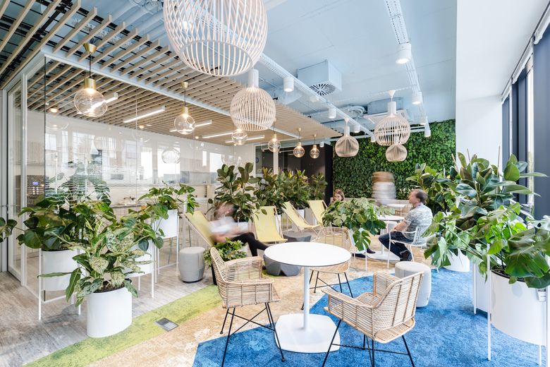 biophilic office - zielone biuro