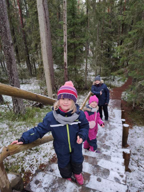 lasy w Estonii