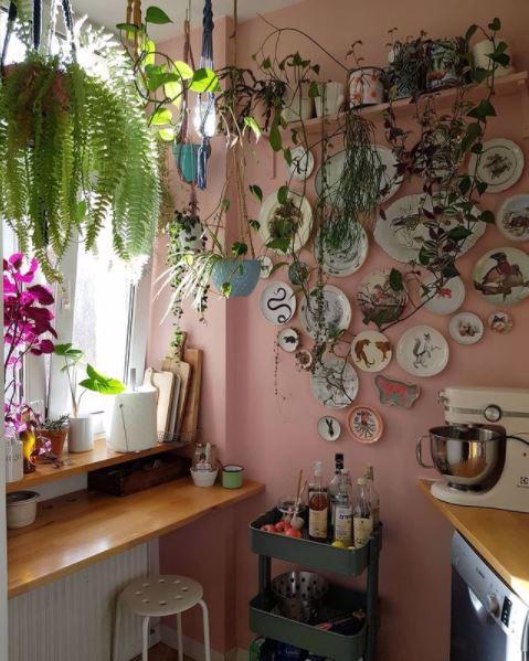 Kuchnia w różu, kolekcja talerzy na ścianie