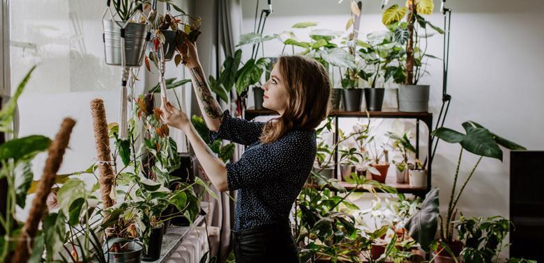 Rzadkie rośliny łatwe w uprawie