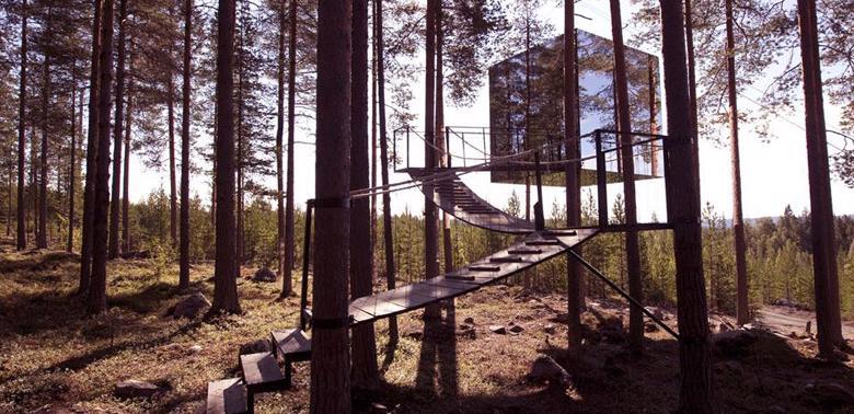 Domki-na-drzewie
