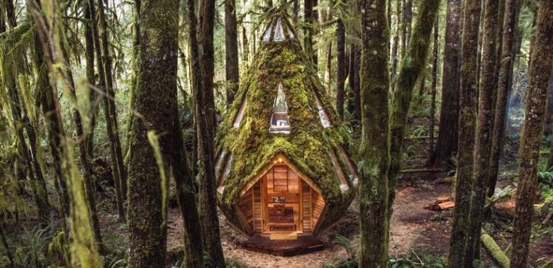 Diamond Cabin