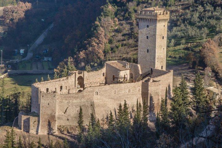 Zamek z gajem oliwnym