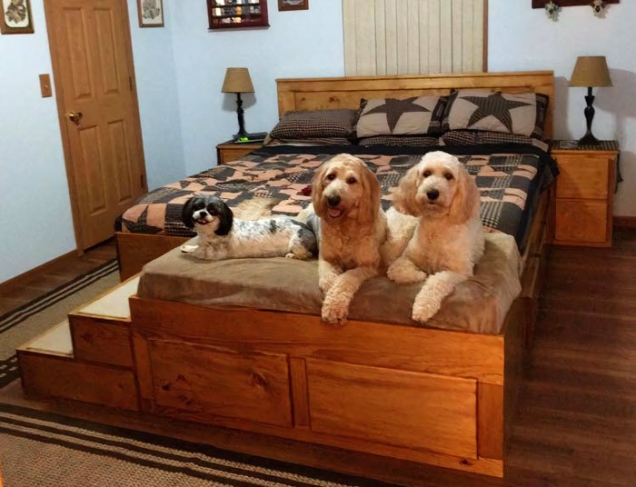 łóżko dla pupila
