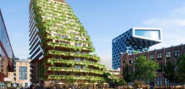 Drewniany wieżowiec w Rotterdamie
